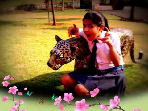 Nidhi bhanushali for ever