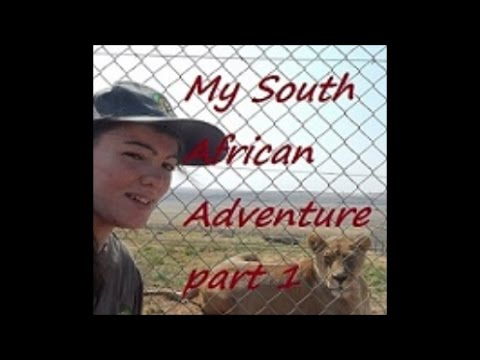 First Insight [My South African Adventure]