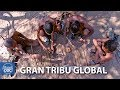 Download Video Download The Great Global Tribe. Full Documentary 3GP MP4 FLV