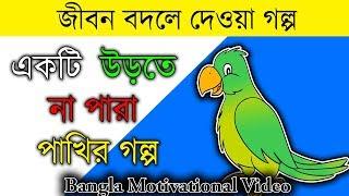 Bangla Motivational Video একটি উড়তে না পারা পাখির গল্প - জীবন বদলে দেওয়া গল্প পর্ব ৩ Bong Knowledge