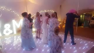 Ann Marie's wedding macarena