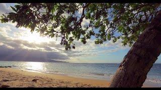 Canon EOS 5D Mark IV Sample Movie: Trip to the Beach