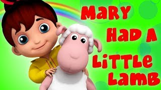 Mary Had A little Lamb | Junior Squad | Kids Videos | Songs For Babies