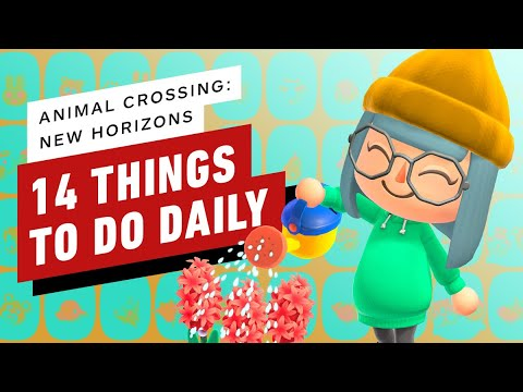 Animal Crossing New Horizons 14 Things To Do Daily