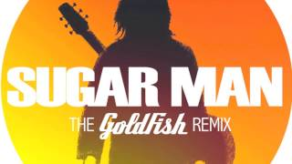 Sugar man by Rodriguez (The Goldfish remix)