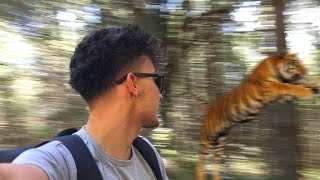 Nos Perdimos en la Sierra del TIGRE!!! (HotSpanish Vlogs)