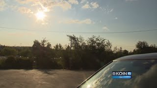 Woman frustrated over dog left in hot car