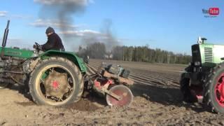 Sianie marchwi 2016 formowanie i walcowanie Fendt 2x farmer 310, favorit 611, ursus c-330