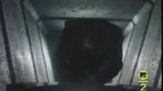 Mr. Roboto- Styx