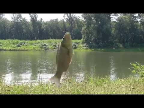 рыбалка в караагаше