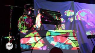 Animal Collective performing