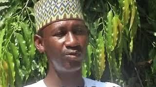 Na rike sonka Mustapha basauyi  Qasida by Bashir Dan Musa