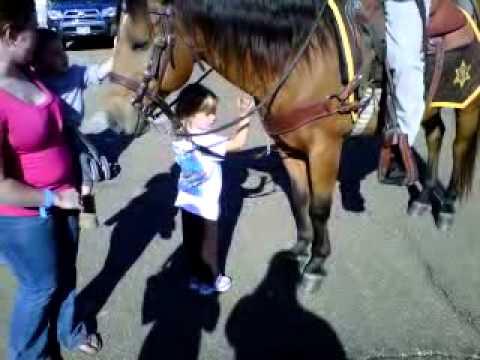 Xxx Mp4 Ashlynn Petting Sheriff S Horse 3GP 3gp Sex