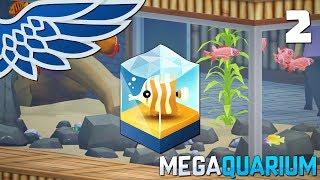 MEGAQUARIUM | Netflix and Krill Part 2 - Aquarium Management Let