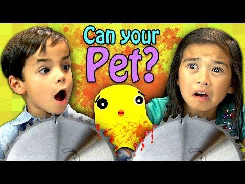 CAN YOUR PET Kids React Gaming