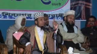 Bangla waz amir Hamza 2017