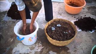 Perfect method of Vermicomposting in your apartment