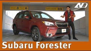 Subaru Forester - Maravillosa, para los que logren comprenderla