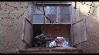 4 شارع شريف - سلمى أبو النجا تتحدث عن أشهر صورة التقطتها