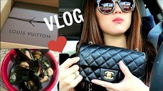 Last Pregnancy Vlog! Cooking, WIMB, LV ST Germain Repaired, Lake!