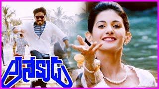 Anekudu Trailer / Teaser / Theatrical Trailer - Dhanush ,Amyra Dastur (HD)