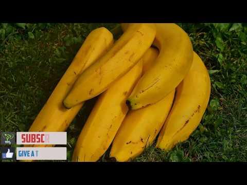 Xxx Mp4 Banana Nutrition Facts Banana Fiber Content Banana Improve S E X Drive 3gp Sex