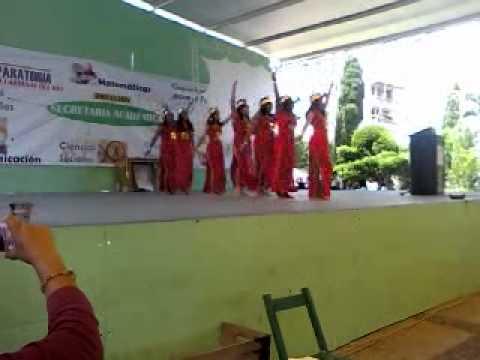 Danza Inca 4º G Prepa Las Margaritas Chiapas