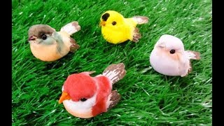Learn Color With Birds | 3D Animation | Nursery Rhymes For Children In English