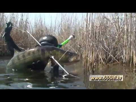 где купить острогу для ловли рыбы в нижнем новгороде