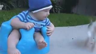 Rabbit snatches the biscuit of a kid - so cute # funny videos