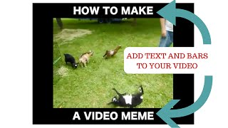 How to make a video meme - video meme generator in any video editor