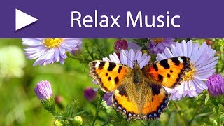 RELAXING NATURE SOUNDS | Stress Relief, Anxiety Relief, Spa Massage Music