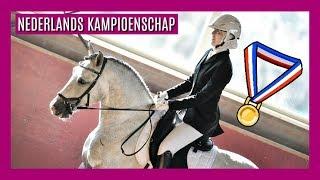 🏅 Dressuurwedstrijd voor Iberische paarden | snuitable