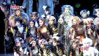 百老汇音乐剧《猫》在香港上演