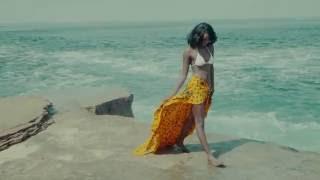 Irina Rimes - Visele (DJ Asher Remix) (Official Video)