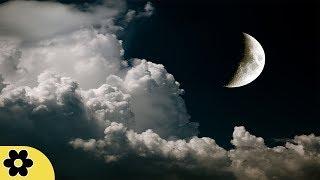 8 Hour Sleep Music for Babies, Deep Sleep Music, Peaceful Music, Relaxing, Sleep Relaxation, ✿3185C