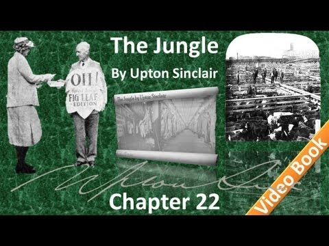 Chapter 22 - The Jungle by Upton Sinclair
