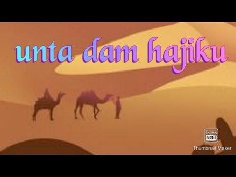 Unta DAM Hajiku 2012 Ustadz mar