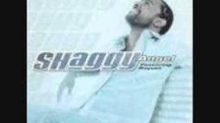 SHAGGY - MR BOOMBASTIC