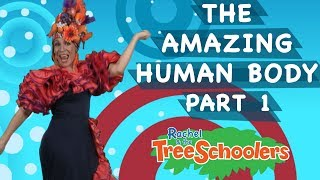 The Amazing Human Body | Treeschool | PART #1 | Educational Kids Videos