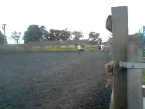 Xxx Mp4 Horse Miaaa 4years Old Xxx 3gp Sex