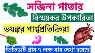 সজনে পাতার উপকারিতা | সজিনা পাতার গুনাগুণ | Moringa Leaves Health Benefits In Bangla