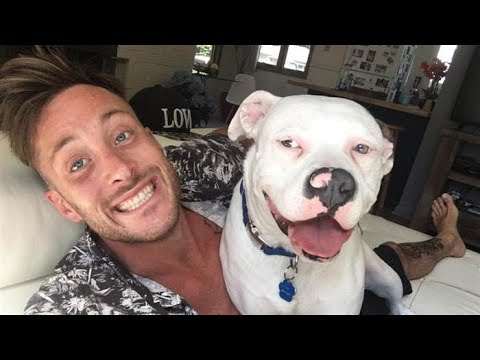 Xxx Mp4 Guy Posts A Selfie With His New Dog Only To Have People Immediately Call The Police On Him 3gp Sex