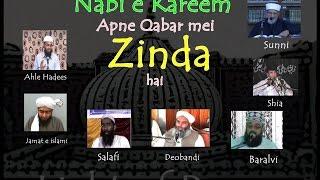 Hayat un Nabi by Shai,Sunni,Baralvi,Deobandi,Salafi,Jamat e islami,Ahle Hadees.......
