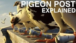 How the pigeon post worked