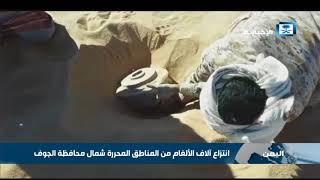 انتزاع آلاف الألغام من المناطق المحررة شمال محافظة الجوف