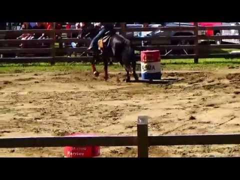 Watch Horseback Barrel Racing Part 6