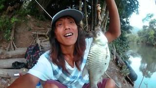 8 JAM MENUNGGU!!! Akhirnya  Ikan Monster Yang Lepas Bisa Tertangkap Kembali