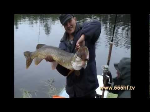рыбалка на путорана видео