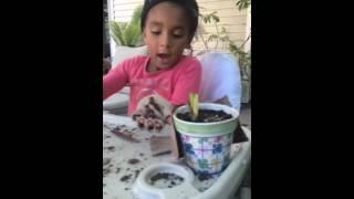 Gardening 101 with Samaria